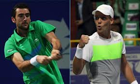 Cilic and Berdych will meet in the Rotterdam final (thanks to www.aircelchennaiopen.org